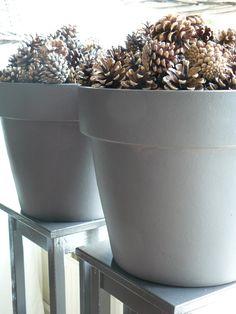 grijze potten gevuld met denneappels