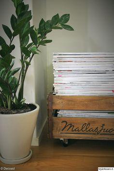 olohuone,puulaatikko,lehtien säilytys,viherkasvi