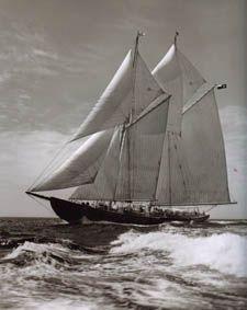 beautiful Bluenose II -- Lunenburg, Nova Scotia (largest working mainsail in the world! Canadian Symbols, Canadian History, Lunenburg Nova Scotia, Fishing Vessel, Atlantic Canada, Cape Breton, O Canada, Prince Edward Island, Tall Ships