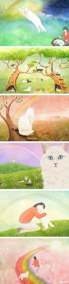 Rainbow Bridge,ペットロスになった方が知る虹の橋の世界,ポエム,虹の橋,絵本,詩,猫,cat