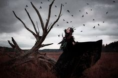 Raven fantasy world  by Eugenia Berg photographer from Finland