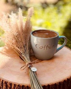 Image discovered by Naina. Find images and videos about food, yummy and coffee on We Heart It - the app to get lost in what you love. Coffee And Books, I Love Coffee, My Coffee, Good Morning Coffee, Coffee Break, Coffee Cafe, Coffee Shop, Café Chocolate, Coffee Pictures