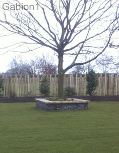 gabion seat around a tree http://www.gabion1.co.uk