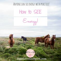 Did you know that ANYONE can see energy? Here's how