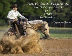Clinton Anderson Foal Training Kit DVD-ROM - amazon.com