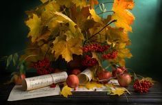 Oxana Saranova - autumn mood    http://500px.com/photo/15589125