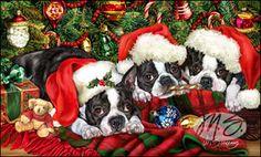 Boston Terrier - Santa's Helpers