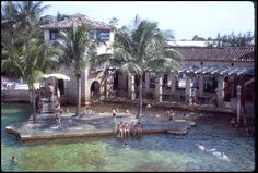 roadtrip23.com: in my life: venetian pool in 1964, coral gables, florida