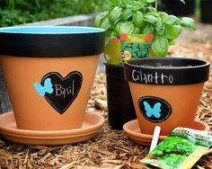 DIY: Chalkboard Flowerpots - Love the chalkboard painted design and butterflies! These would be cute for growing fresh herbs.