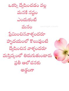 pungii Love Quotes In Telugu, Telugu Inspirational Quotes, Motivational Quotes For Life, Good Life Quotes, Me Quotes, Quotes For Whatsapp, Whatsapp Dp, Girl Names With Meaning, Kalam Quotes