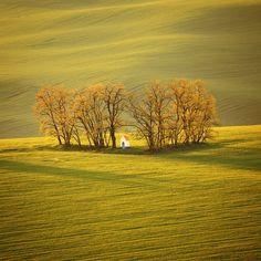 SOUTH MORAVIA by Tomáš Morkes, via 500px