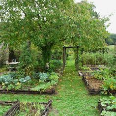 raised bed vegetable garden with woven wattle potager design garden types Unlock the Secrets to a Perfect Garden Layout! (A Reference Tool for Gardeners) Vegetable Garden Planner, Backyard Vegetable Gardens, Potager Garden, Vegetable Garden Design, Fruit Garden, Permaculture Garden, Vegetable Bed, Cottage Garden Design, Herbs Garden