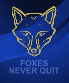 Foxes never quit With optimal health often comes clarity of thought. Click now to visit my blog for your free fitness solutions!
