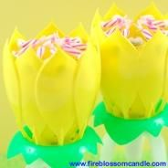 Yellow There - 2 Yellow Fire Blossoms  www.fireblossomcandle.com  A unique cake candle for your birthday party