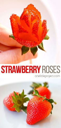 These easy strawberry roses can be used for so many things! Put them on top of a strawberry cake. Skewer one and have it as a stir stick in a glass of champagne. Skewer many and make them into a bouquet of strawberry roses. Or set them on a dessert plate as a beautiful garnish. They are such a fun and impressive way to decorate a dessert! Valentines Day Desserts, Valentine Cookies, Breakfast Recipes, Dessert Recipes, Strawberry Roses, Glass Of Champagne, Stir Sticks, Skewers, Truffles