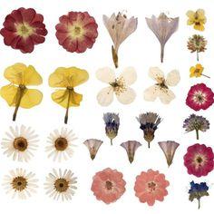 Preserve flower samples in wax paper for a keepsake from each gardening season.