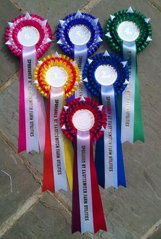 Horse Show Ribbons, Ribbon Rosettes, Ribbon Crafts, Show Horses, Diy And Crafts, Badge, Health, Fitness, Craft