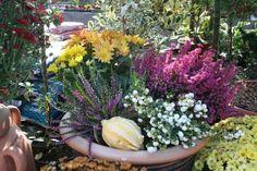 Výsledek obrázku pro podzimni venkovni dekoracer