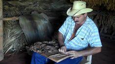 Así se hace el tabaco cubano: ¡el mejor del mundo! - CubaConecta 🇨🇺