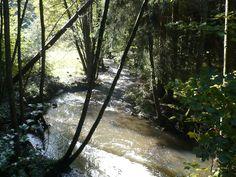 ...auf der Strecke passiert man auch einige Flüsse und Bäche...