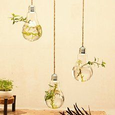 Mkono 3 pack Hanging Light Bulb Shape Glass Vase Flower Plant Pot Container Planter Terrarium Home Decoration