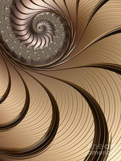 Bronze Spiral Digital Art