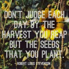 Don't judge each day by the harvest you reap, but the seeds that you planted.