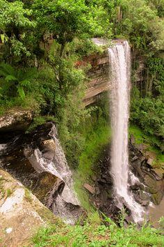 Cascata do Paulista Doutor Pedrinho, Santa Catarina - BRASIL Waterfall Twist, Waterfall Trail, Forest Waterfall, Go Brazil, Hill Station, Landscape Photography, The Good Place, 3 D, Beautiful Places