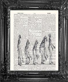 The Evolution of Man Print Darwin Print Science by PosterPrintsBy