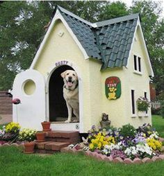 flower bed around the dog house :)