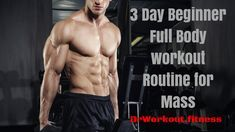 Workout plans, helpful home fitness post to get healthy. Jump to this workout routine pin reference 9189078323 here. Bodybuilding Routines, Bodybuilding For Beginners, Bodybuilding Memes, 3 Day Workout Routine, Workout Routines For Beginners, Crossfit Routines, Gym Workouts, Beginner Full Body Workout, Post Workout Drink
