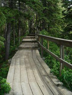 Kerry Wood Nature Centre - Red Deer, Alberta - Beautiful