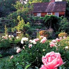 Tasha Tudor had the most wonderful garden. :)