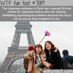 WTF Fun Facts is updated daily with interesting & funny random facts. We post about health, celebs/people, places, animals, history information and much more. New facts all day - every day! Wtf Fun Facts, Funny Facts, Odd Facts, Strange Facts, Crazy Facts, Interesting Information, Interesting History, Interesting Facts, Did You Know Facts