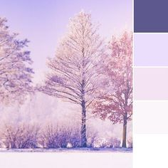 Are you a fan of the color purple? This deep winter color palette, with its icy violet and royal purple, will make you want to pull on a wool coat! Let us know if you'd like to see more blog designs using this palette. . . #colorlove #colorscheme #colorpalette #colour #color #colourlove #colourscheme #colourpalette #colorpower #powerofcolor #designerblogs #wintercolors #winterpalette #purple #purplewinter #Regram via @designerblogs