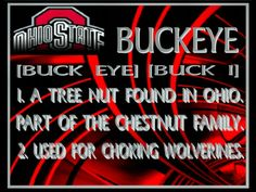 Ohio State Buckeyes Football | OHIO,STATE,BUCKEYES,DEFINITION BUCKEYES DEFINITION BUCKEYE DEFINITION ...