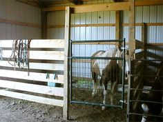 Stall without Kickboard Barn Stalls, Horse Stalls, Horse Barns, Horse Shelter, Horse Rescue, Barn Layout, Small Barns, Horse Barn Plans, Horse Ranch