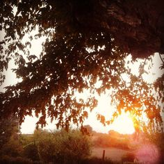 Sun hides  #sun #sunset