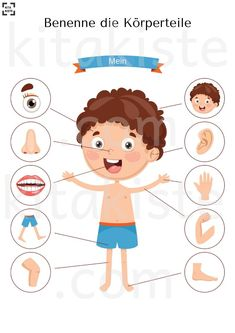 My body - PDF for laminating - - Kindergarten Portfolio, Kindergarten First Day, Kindergarten Activities, Kindergarten Classroom, Body Parts Preschool, Machine Learning Methods, Free To Use Images, Memory Games, Crafts For Kids