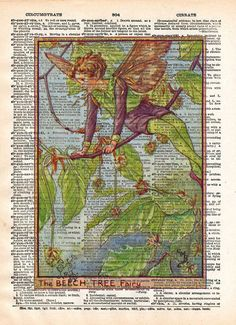 Vintage Flower Fairy art, Beech Tree Flower Fairy, Fairy art print, Dictionary print art