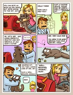 This is why cat owners should learn cat behavior basics.