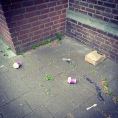 Vrije compostie Materiaal: Mc Donaldsbekertjes en Primarktasje #zwerfieHasseltGoirke #TilburgSchoon #buurtcultuurTilburg