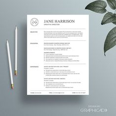 Resume Template / 4 Page CV Template - Fonts, Graphics, Themes, Templates College Resume Template, Simple Resume Template, Resume Design Template, Cv Template, Resume Templates, Resume Words Skills, Resume Writing Tips, Resume Tips, Resume Examples