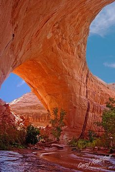 Lobo or Jacob Hamblin Arch in Coyote Gulch, Escalante, Utah.