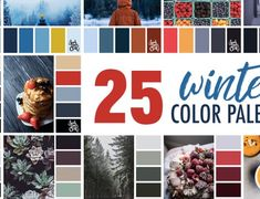 25 Winter Color Palettes