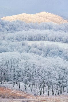 ILLUMINATION -- Max Patch Mountain, NC...Storm light paints one ridge while the rest stays in the shade...snowstorm...    by Light of the Wild, via Flickr