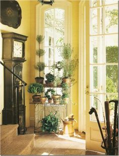 I love this yellow decor with the light streaming in and the green and grandfather clock