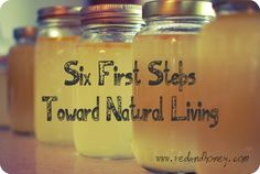 Six First Steps Toward Natural Living - Red and Honey