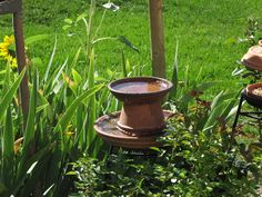 pictures of homemade bird bath - Yahoo Image Search Results Homemade Bird Houses, Matching Paint Colors, Bird House Kits, Modern Home Furniture, Paint Stripes, How To Attract Birds, Super Healthy Recipes, Kit Homes, Raised Beds