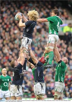 Richie Gray and Donncha O'Callaghan. Scottish Rugby Team, Irish Rugby, Six Nations Rugby, Rugby Championship, Hot Rugby Players, Rugby Men, National Football Teams, Soccer World, Rugby League